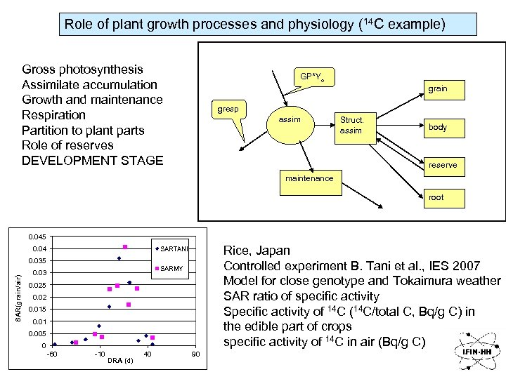 Role of plant growth processes and physiology (14 C example) Gross photosynthesis Assimilate accumulation
