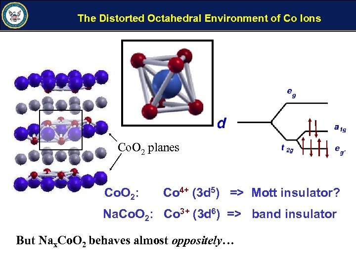 The Distorted Octahedral Environment of Co Ions Co. O 2 planes Co. O 2: