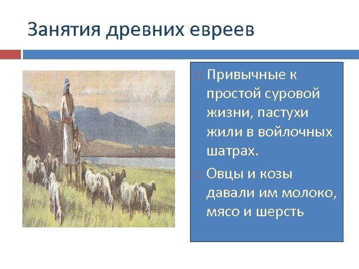 Занятия древних евреев Привычные к простой суровой жизни, пастухи жили в войлочных шатрах. Овцы