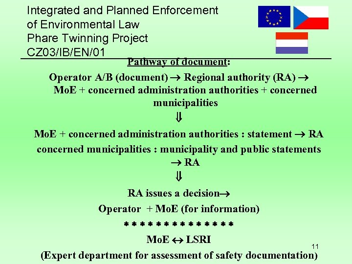 Integrated and Planned Enforcement of Environmental Law Phare Twinning Project CZ 03/IB/EN/01 Pathway of