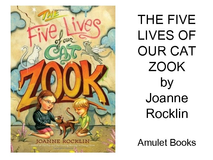 THE FIVE LIVES OF OUR CAT ZOOK by Joanne Rocklin Amulet Books