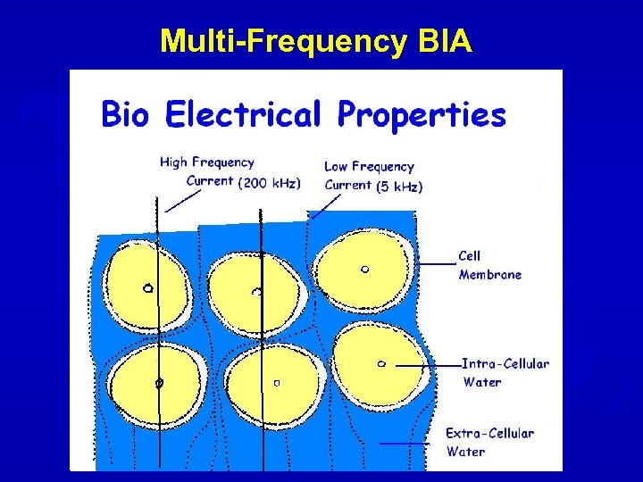 Multi-Frequency BIA