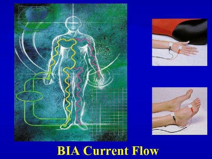 BIA Current Flow
