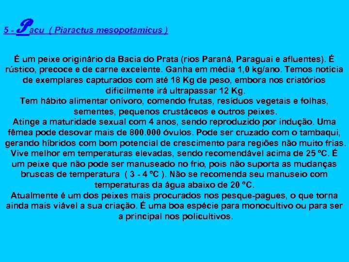 5 - Pacu ( Piaractus mesopotamicus ) É um peixe originário da Bacia do