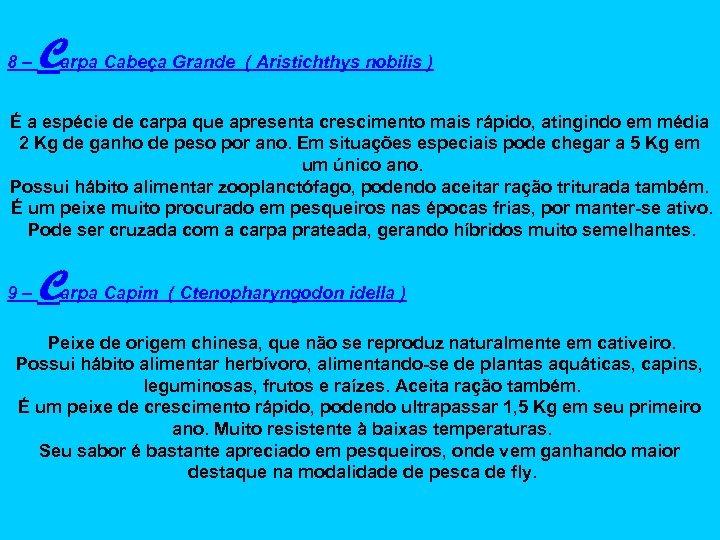 8– Carpa Cabeça Grande ( Aristichthys nobilis ) É a espécie de carpa que