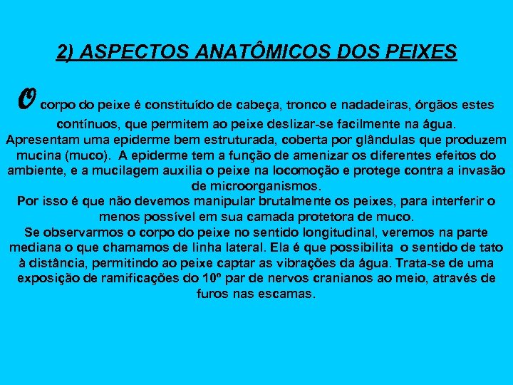 2) ASPECTOS ANATÔMICOS DOS PEIXES O corpo do peixe é constituído de cabeça, tronco