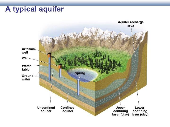 A typical aquifer