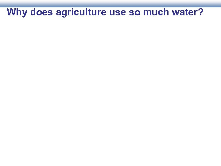 Why does agriculture use so much water?