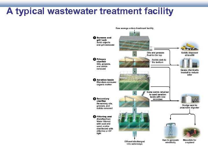 A typical wastewater treatment facility