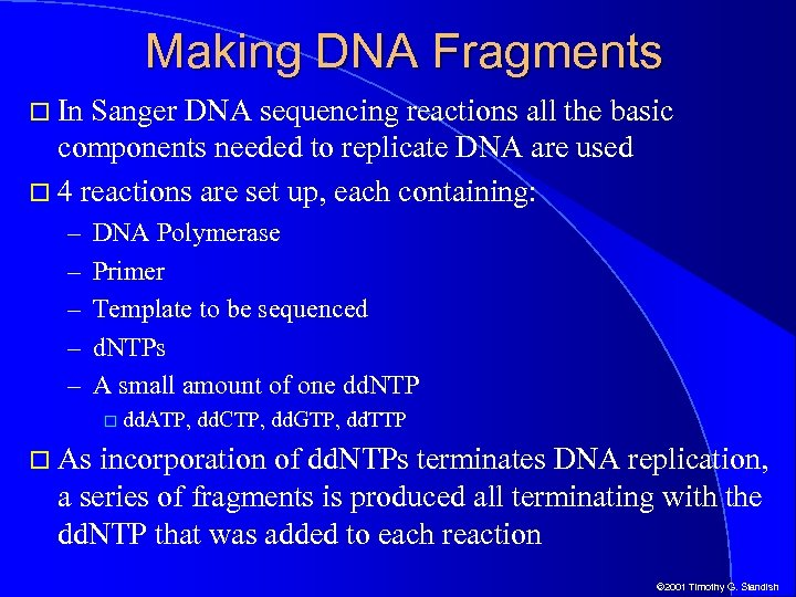 Making DNA Fragments In Sanger DNA sequencing reactions all the basic components needed to