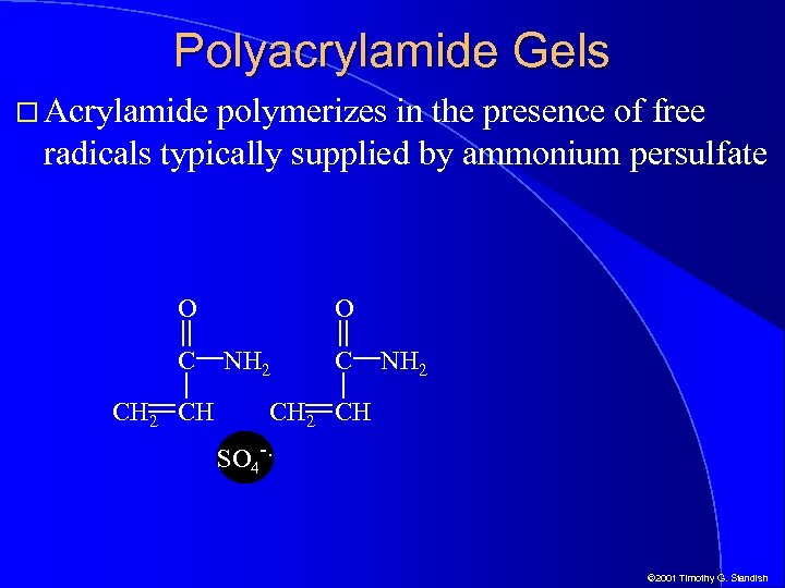 Polyacrylamide Gels Acrylamide polymerizes in the presence of free radicals typically supplied by ammonium