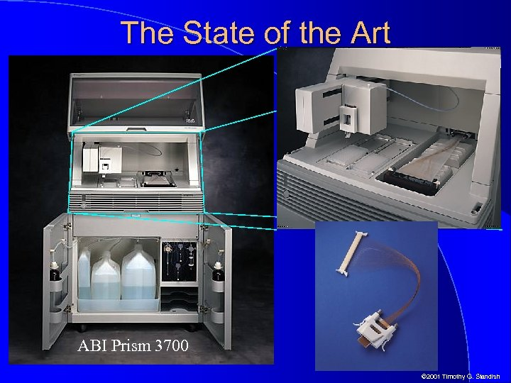The State of the Art ABI Prism 3700 © 2001 Timothy G. Standish
