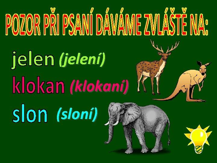 (jelení) (klokaní) (sloní)