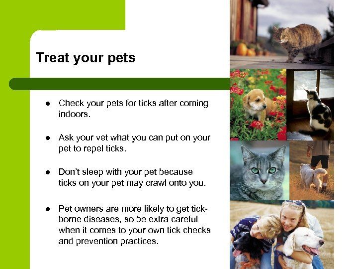 Treat your pets l Check your pets for ticks after coming indoors. l Ask