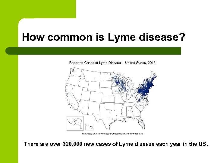 How common is Lyme disease? There are over 320, 000 new cases of Lyme