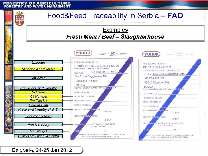 Food&Feed Traceability in Serbia – FAO Examples Fresh Meat / Beef – Slaughterhouse Exporter
