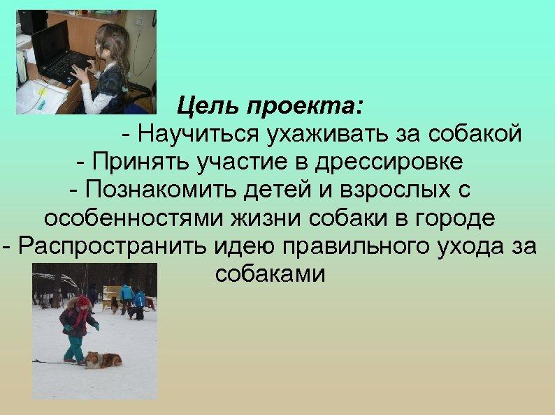 Цель проекта: - Научиться ухаживать за собакой - Принять участие в дрессировке - Познакомить