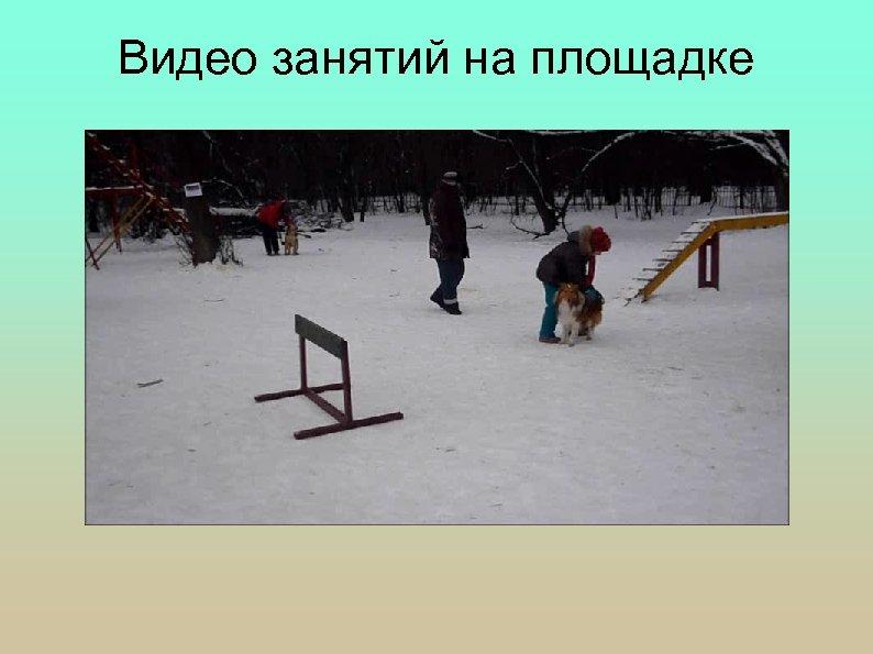 Видео занятий на площадке