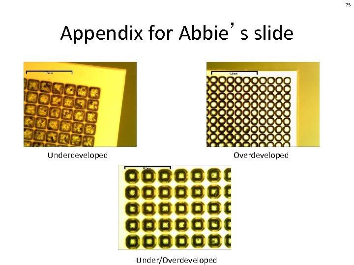 75 Appendix for Abbie's slide Underdeveloped Overdeveloped Under/Overdeveloped
