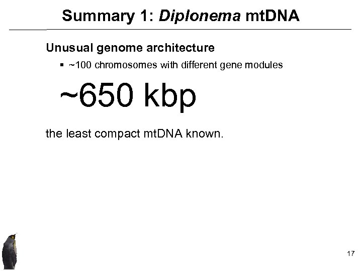 Summary 1: Diplonema mt. DNA Unusual genome architecture § ~100 chromosomes with different gene