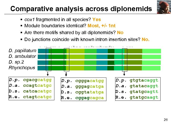 Comparative analysis across diplonemids § § cox 1 fragmented in all species? Yes Module