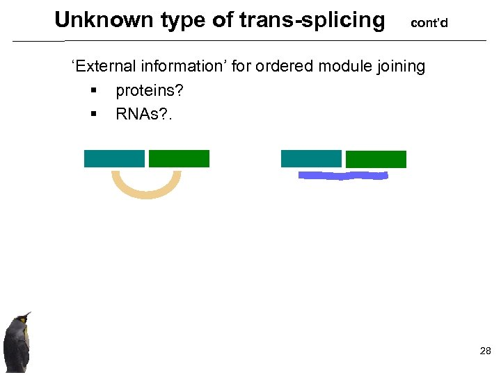 Unknown type of trans-splicing cont'd 'External information' for ordered module joining § proteins? §