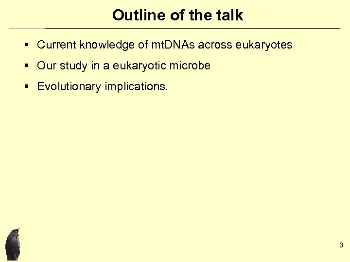 Outline of the talk § Current knowledge of mt. DNAs across eukaryotes § Our