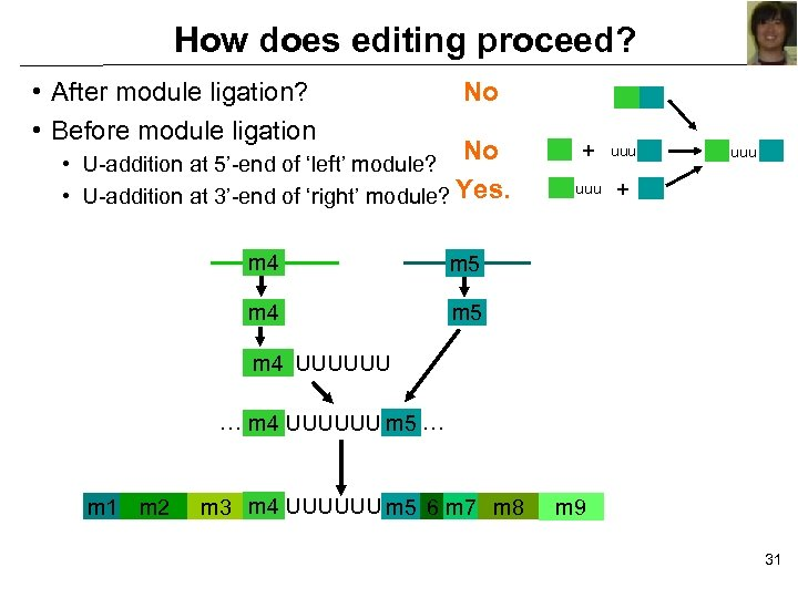 How does editing proceed? • After module ligation? • Before module ligation No No