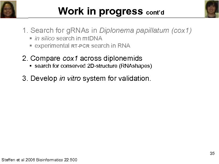 Work in progress cont'd 1. Search for g. RNAs in Diplonema papillatum (cox 1)