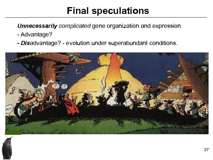 Final speculations Unnecessarily complicated gene organization and expression - Advantage? - Disadvantage? - evolution