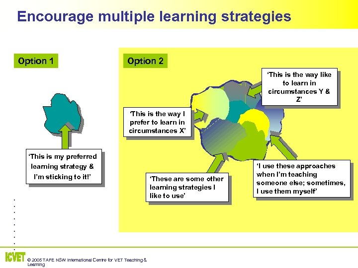 Encourage multiple learning strategies Option 1 Option 2 'This is the way like to