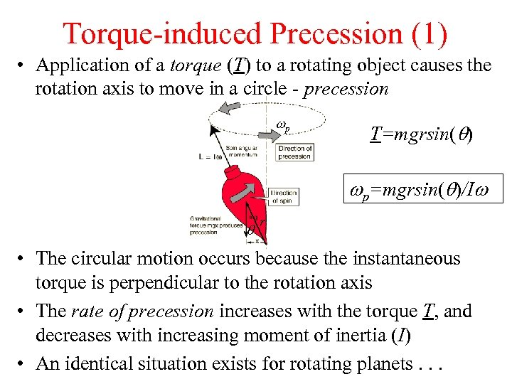 Torque-induced Precession (1) • Application of a torque (T) to a rotating object causes