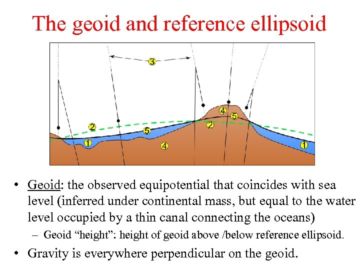 The geoid and reference ellipsoid • Geoid: the observed equipotential that coincides with sea