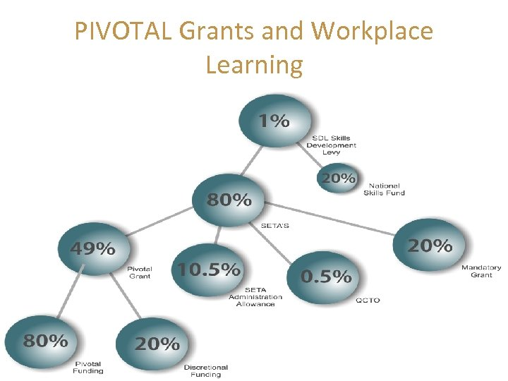 PIVOTAL Grants and Workplace Learning