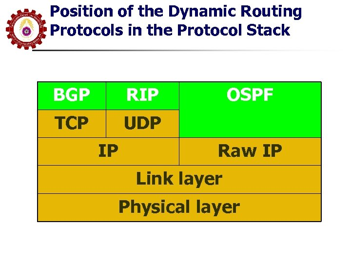 Position of the Dynamic Routing Protocols in the Protocol Stack BGP RIP TCP UDP