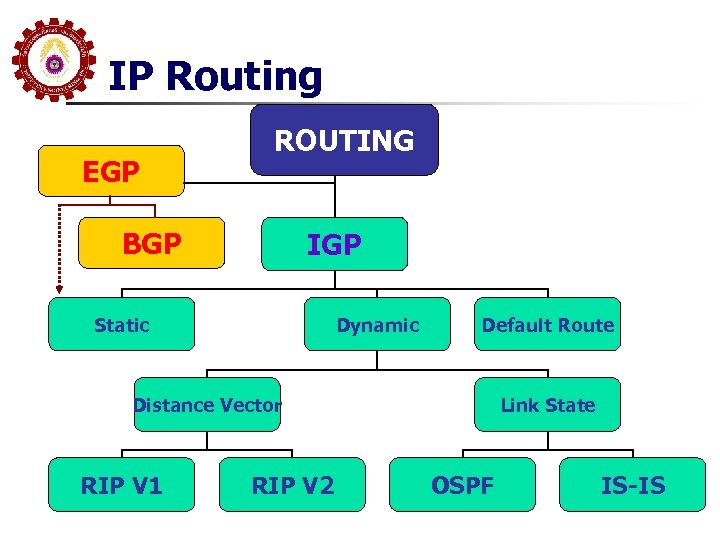 IP Routing EGP ROUTING BGP IGP Static Dynamic Default Route Distance Vector RIP V