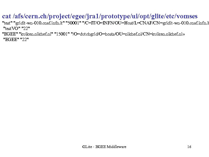 cat /afs/cern. ch/project/egee/jra 1/prototype/ui/opt/glite/etc/vomses