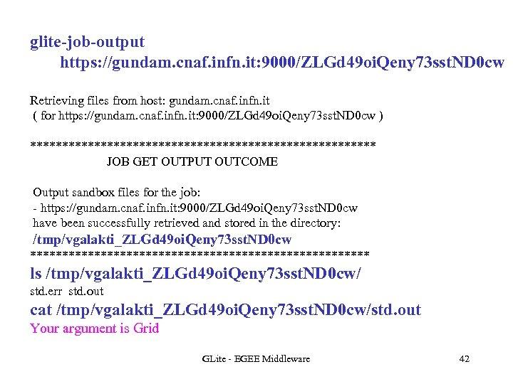 glite-job-output https: //gundam. cnaf. infn. it: 9000/ZLGd 49 oi. Qeny 73 sst. ND 0