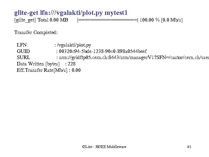 glite-get lfn: ///vgalakti/plot. py mytest 1 [glite_get] Total 0. 00 MB  ==========  100. 00