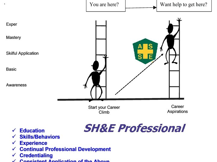 SH&E Professional