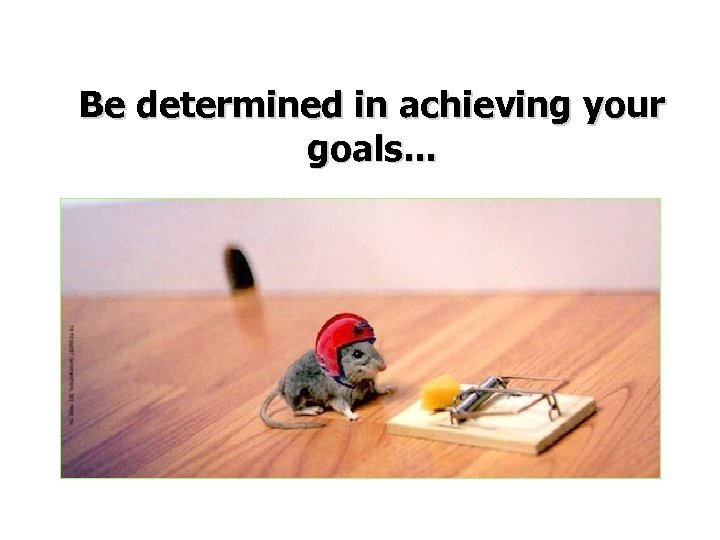 Be determined in achieving your goals. . .