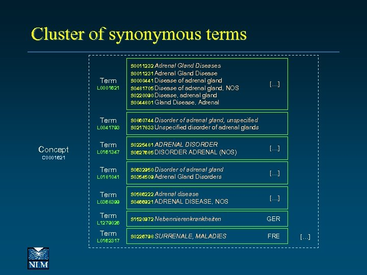 Cluster of synonymous terms Term L 0001621 Term L 0041793 Concept C 0001621 Term