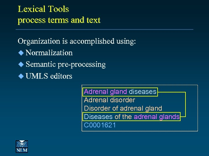 Lexical Tools process terms and text Organization is accomplished using: u Normalization u Semantic
