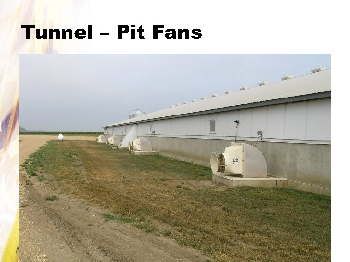 Tunnel – Pit Fans