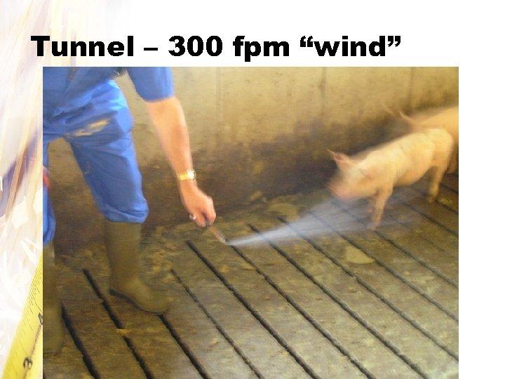 """Tunnel – 300 fpm """"wind"""""""