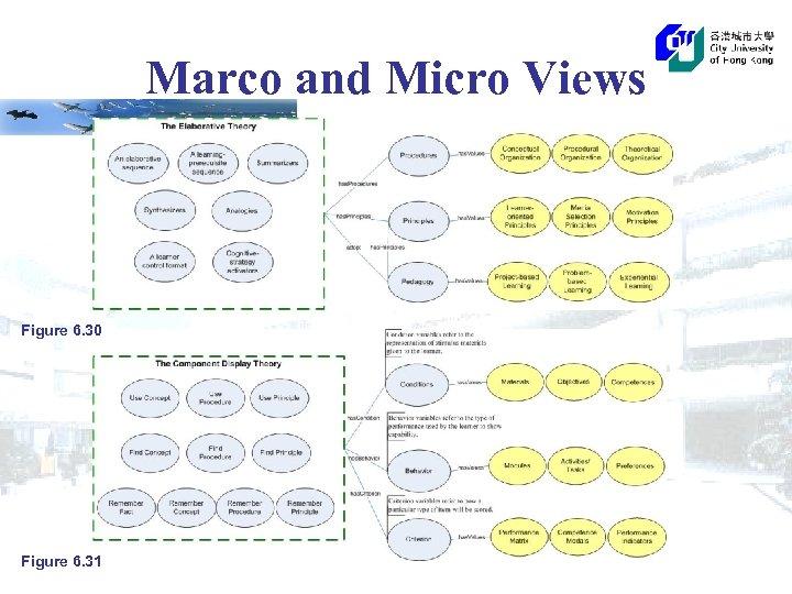 Marco and Micro Views Figure 6. 30 Figure 6. 31