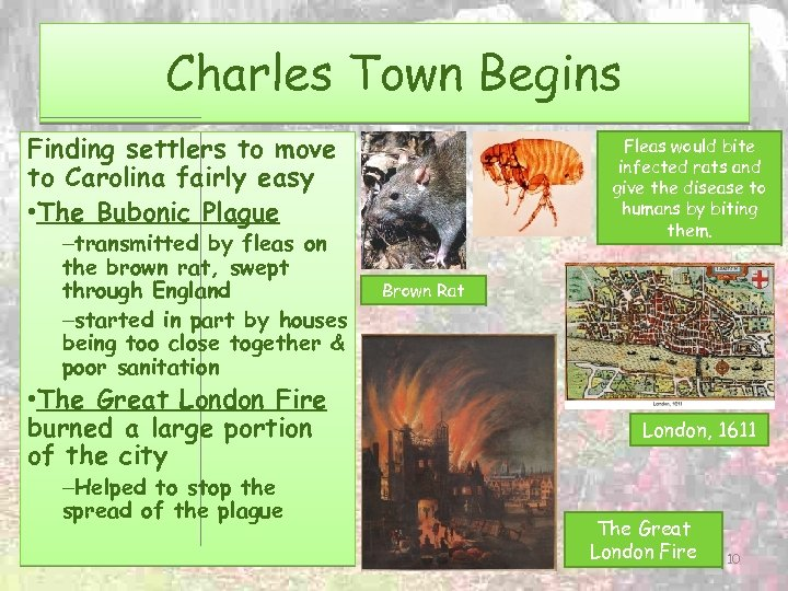 Charles Town Begins Finding settlers to move to Carolina fairly easy • The Bubonic