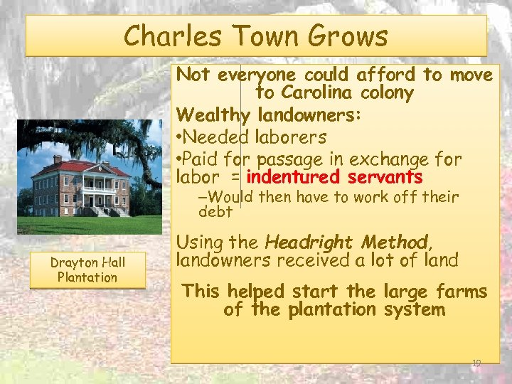 Charles Town Grows Not everyone could afford to move to Carolina colony Wealthy landowners: