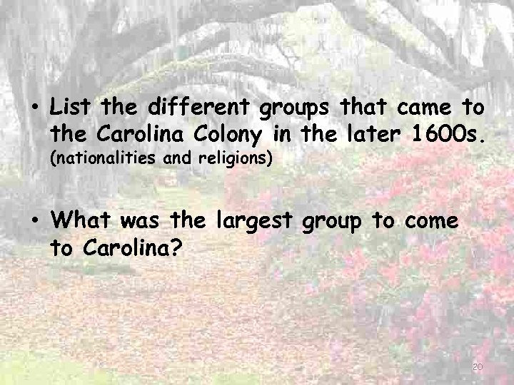 • List the different groups that came to the Carolina Colony in the