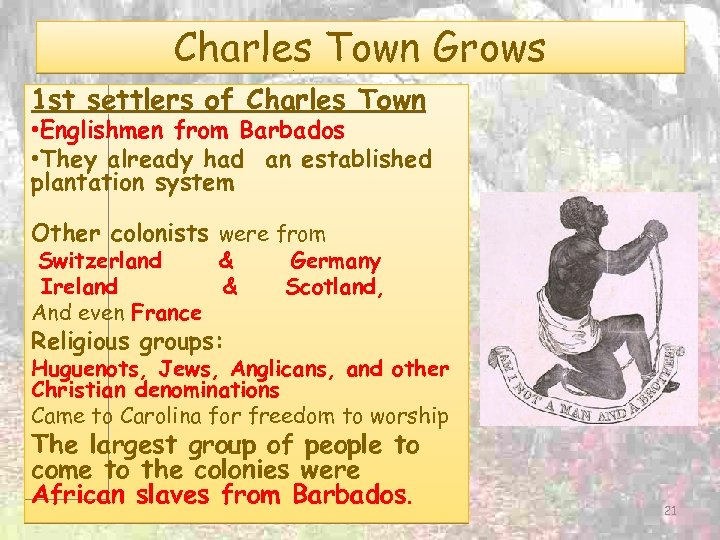 Charles Town Grows 1 st settlers of Charles Town • Englishmen from Barbados •